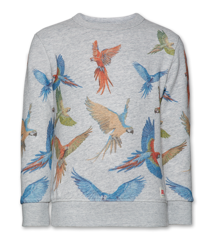 Sweatshirt C-neck Parrots - Heather Grey
